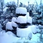 雪かき注意報★